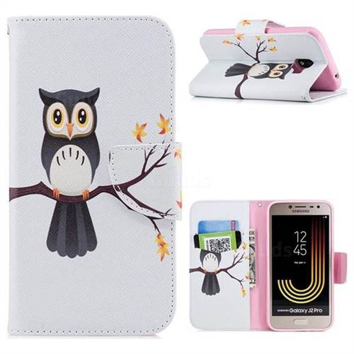 Owl on Tree Leather Wallet Case for Samsung Galaxy J2 Pro (2018)
