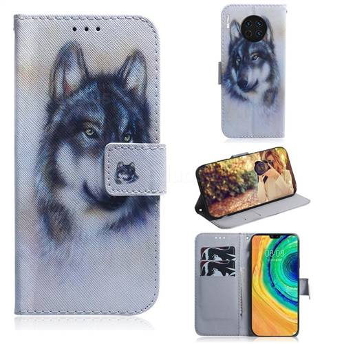 Snow Wolf PU Leather Wallet Case for Huawei Mate 30