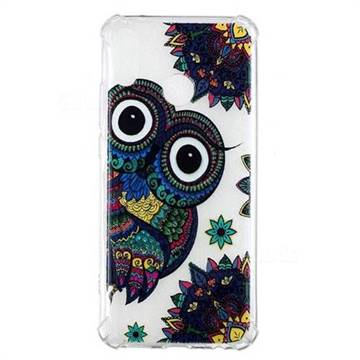 Owl Totem Anti-fall Clear Varnish Soft TPU Back Cover for Huawei Y9 (2019)