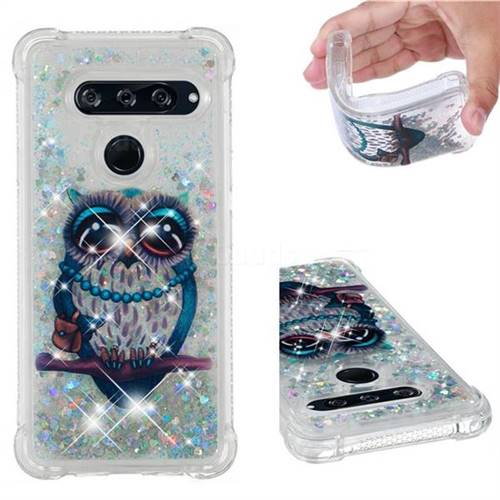 Sweet Gray Owl Dynamic Liquid Glitter Sand Quicksand Star TPU Case for LG V40 ThinQ