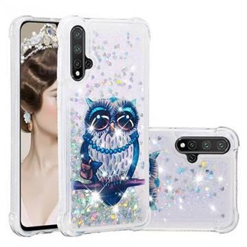 Sweet Gray Owl Dynamic Liquid Glitter Sand Quicksand Star TPU Case for Huawei Nova 5 / Nova 5 Pro