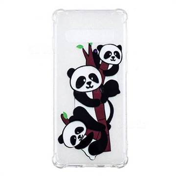 Three Pandas Anti-fall Clear Varnish Soft TPU Back Cover for Samsung Galaxy S10 (6.1 inch)