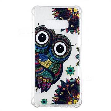 Owl Totem Anti-fall Clear Varnish Soft TPU Back Cover for Samsung Galaxy S10 Lite(5.8 inch)