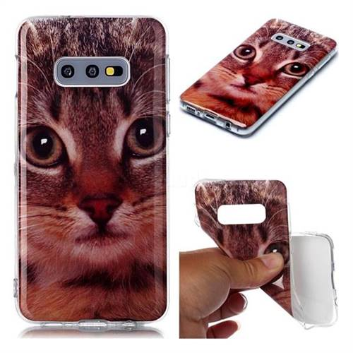 Garfield Cat Soft TPU Cell Phone Back Cover for Samsung Galaxy S10e (5.8 inch)