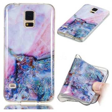 Purple Amber Soft TPU Marble Pattern Phone Case for Samsung Galaxy S5 G900