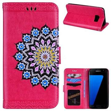 Datura Flowers Flash Powder Leather Wallet Holster Case for Samsung Galaxy S7 Edge s7edge - Rose