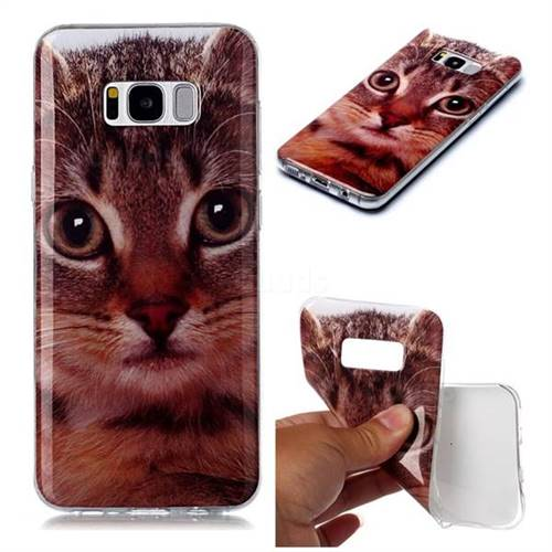 Garfield Cat Soft TPU Cell Phone Back Cover for Samsung Galaxy S8