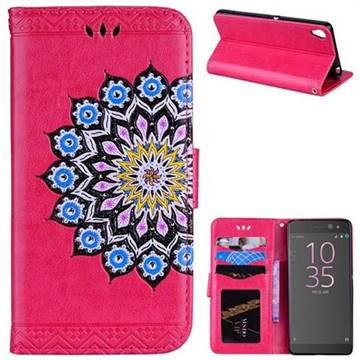 Datura Flowers Flash Powder Leather Wallet Holster Case for Sony Xperia XA - Rose