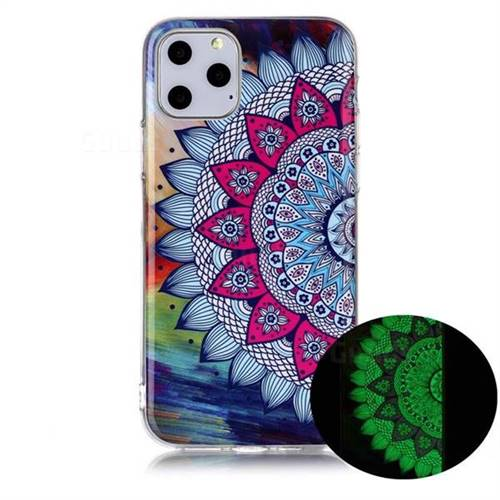 Colorful Sun Flower Noctilucent Soft TPU Back Cover for iPhone 11 Pro Max (6.5 inch)