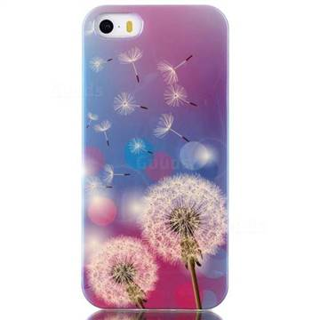 Dandelions Blue Ray Light TPU Case for iPhone SE / iPhone 5s / iPhone 5