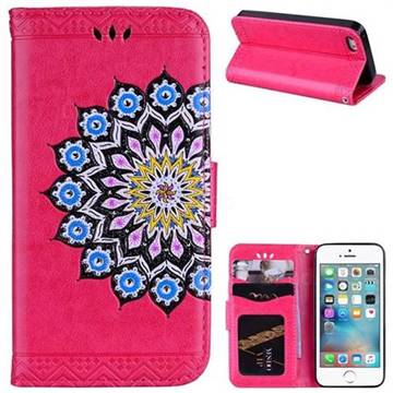 Datura Flowers Flash Powder Leather Wallet Holster Case for iPhone SE 5s 5 - Rose
