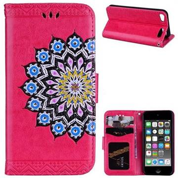 Datura Flowers Flash Powder Leather Wallet Holster Case for iPod Touch 5 6 - Rose